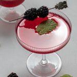 Blackberry Vanilla Gin Gimlet Cocktail with Empress Gin