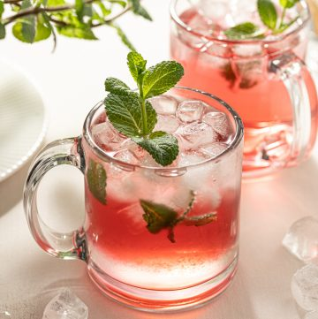 Passion Tea Mint Mojito Cocktail Club Soda White Rum