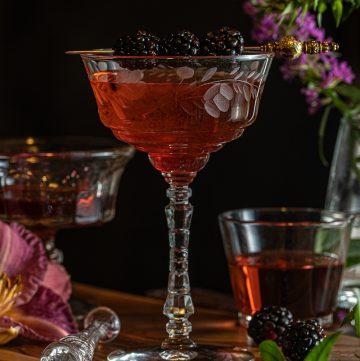 Hibiscus Blackberry Gin Cooler